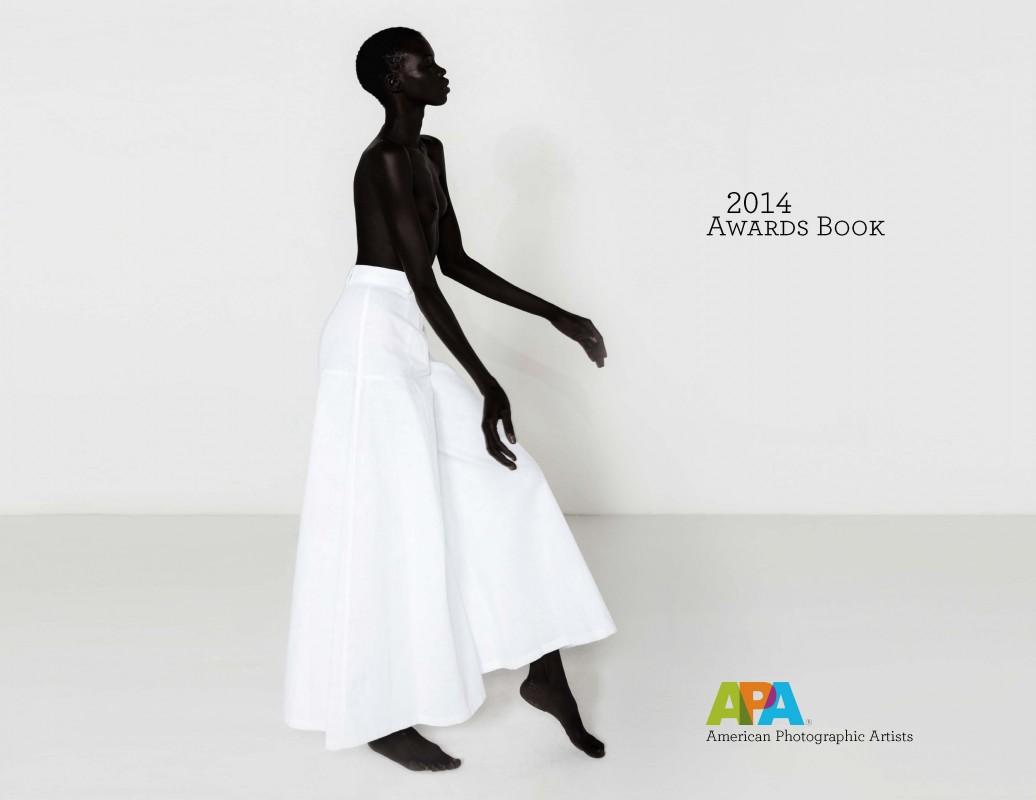 APA Awards: Over $100,000 in Prizes