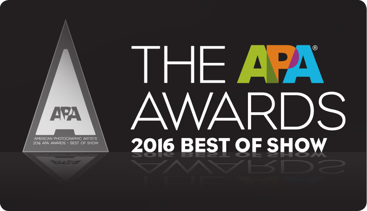 You could still win 2016 APA Awards Best of Show