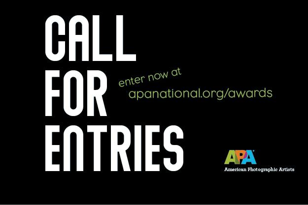 2019 APA Awards - Call for Entries