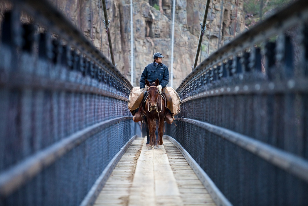 Behind the Lens: Photographers of the American West Featuring Tom Brownold